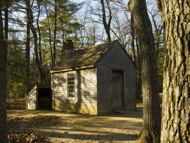 Thoreau Hütte am Walden Pond